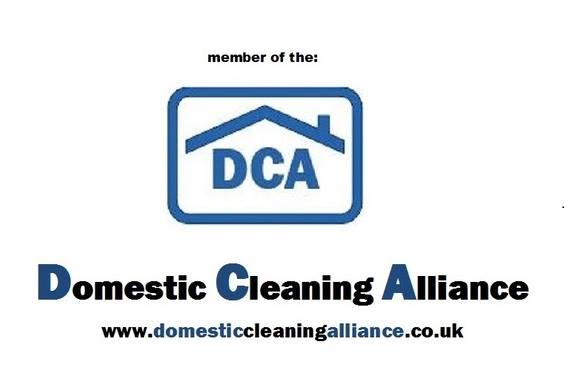 The Domestic Cleaning Alliance